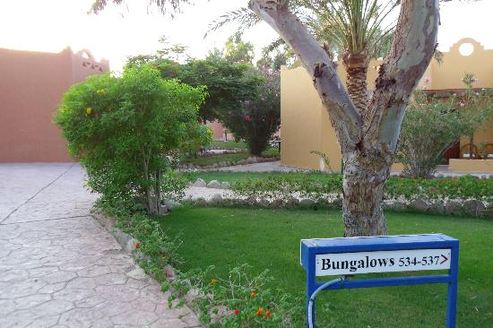 Nubian Village Hotel: area bungalow