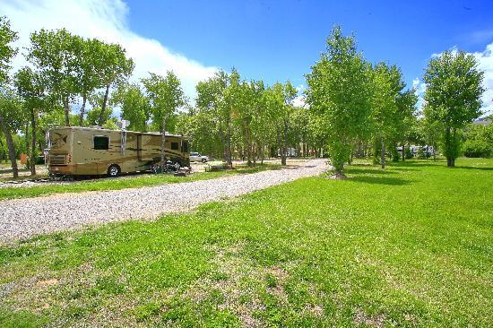 The Longhorn Ranch Lodge & RV Resort: RV Park