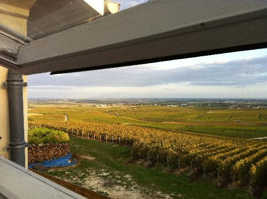 Les Grappes d'Or: View from our bedroom