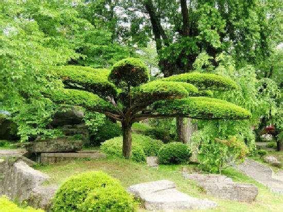 Takashima Castle: 美しい庭園