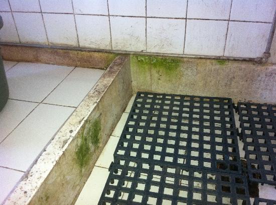 Pousada de Maubisse: Bathroom and algae