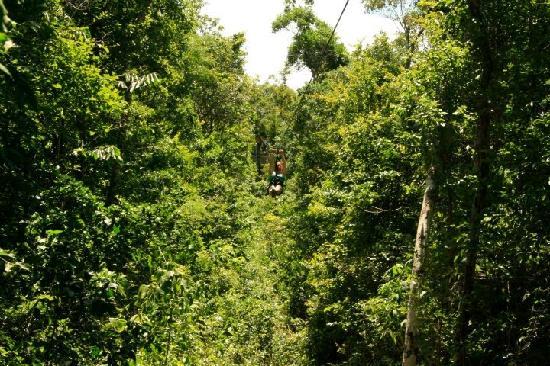 Hidden Worlds Family Cenote Park: Mi primer tirolesa!! wooowww!!!