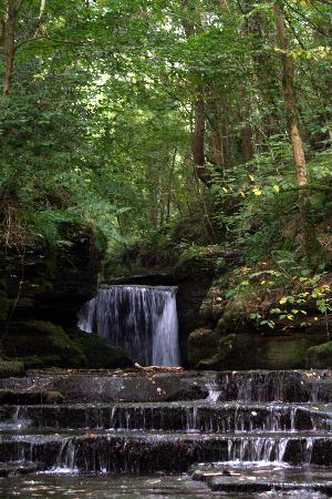 Llanerchcoedlan Farm Guest House: The Waterfall