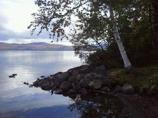 Hunter Cove Cabins on Rangeley Lake: Ducks by the shore