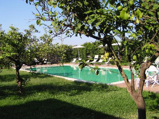 Agriturismo Galea: a great pool just a few steps from the cottage