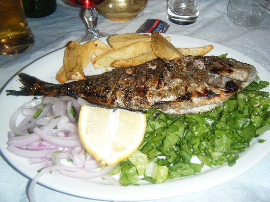 The Caravan Restaurant: fish, caught that day!!