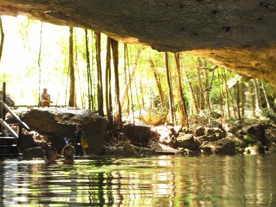 El Jardin de Frida: Cenote 2 Ojos