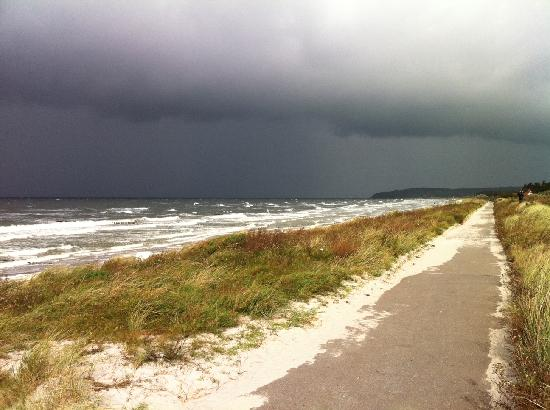 Hiddensee, Germania: Ostseestrand bei Westwind