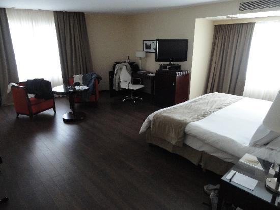 Diplomatic Hotel: Habitación