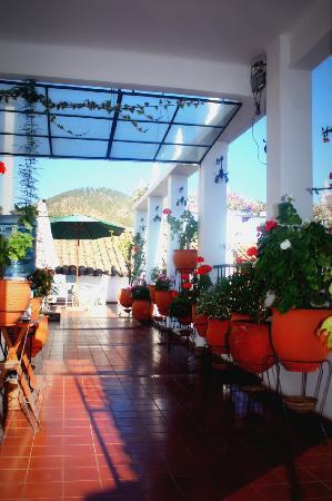 El Hostal de Su Merced: Courtyard view