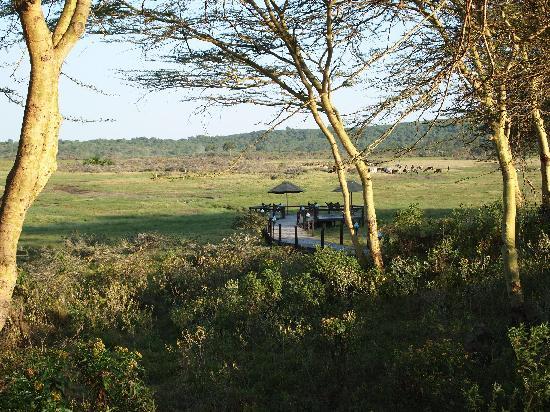 Hatari Lodge: Beobachtungsplatz der Lodge