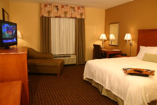 Hampton Inn Leesburg - Tavares: King room, all non-smoking and with free wi-fi access.