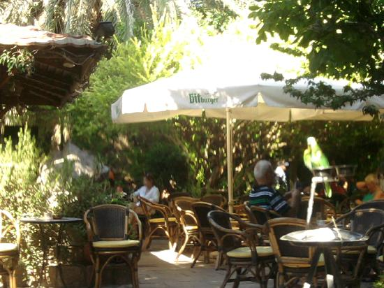 Nafsika Hotel : Soucratous Garden is a really nice place a bit up in Socratous street in the Old Town