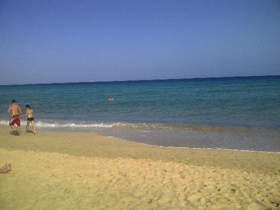 Occidental Jandia Playa: jandia beach