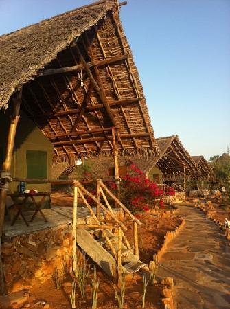 Kiboko Camp: le tende