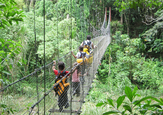Utuado, Portorico: A hanging bridge