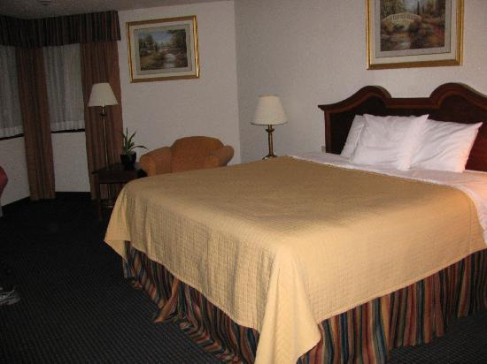 Baymont Inn & Suites Hagerstown: king bed