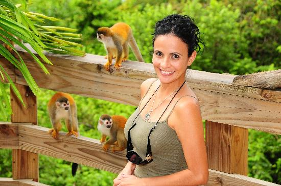 Issimo Suites Boutique Hotel and Spa: One of the many frequent visits from squirrel monkeys