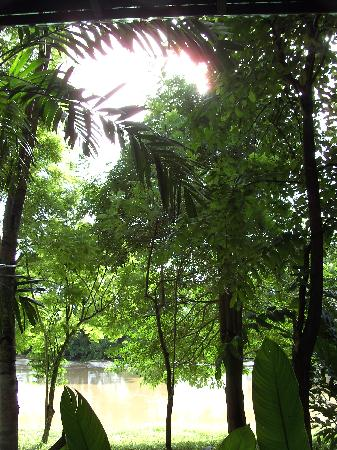 Baan Nam Ping Riverside Village: Blick von der Terrasse auf den Fluss