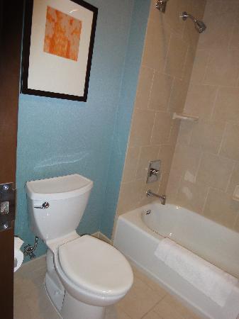 Hyatt Place Phoenix/Mesa: small bath