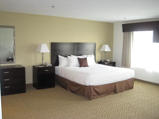 Best Western Plus Valdosta Hotel & Suites: Suite with king-size bed