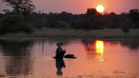 Kwara Camp - Kwando Safaris : A sunset at Kwara