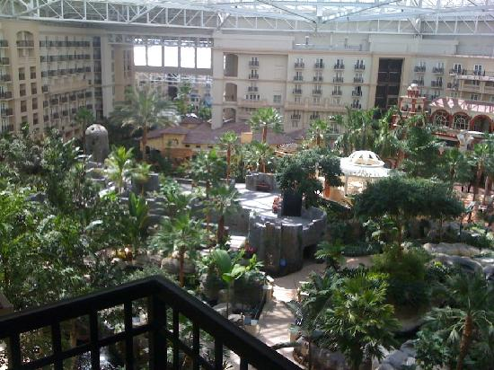 Gaylord Palms Resort & Convention Center: view of 9073