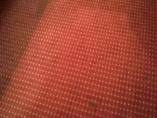 Masters Inn Tuscaloosa: The carpet near the door