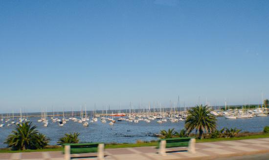 Hotel Iberia: Malecon cercano#.