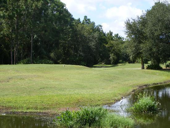 Cypress Head Golf Club : The Golf Club at Cypress Head, Port Orange, Florida