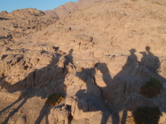 Vova Sharm Excursions -Day Tours : Dans le Desert
