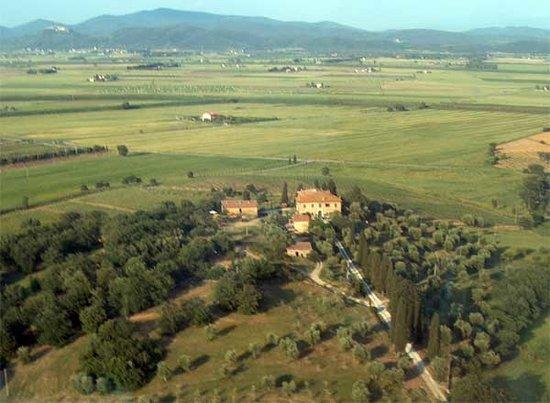 Agriturismo Poggialberi: Olivi, cipressi e querce secolari