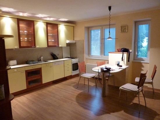 Apartments Bratislava: Kitchen