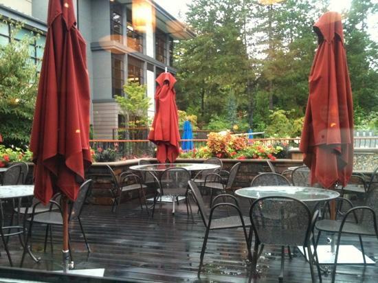هوتل بيلفيو: ジム隣接のカフェの窓から。少し雨模様。