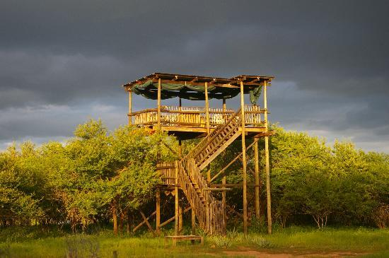 Funky Monkeys Backpackers & Safaris: Funky Safaris Camp, veiwing deck over Kruger