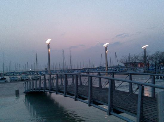 โรงแรมโมเวนพิค โลซาน: Marina view