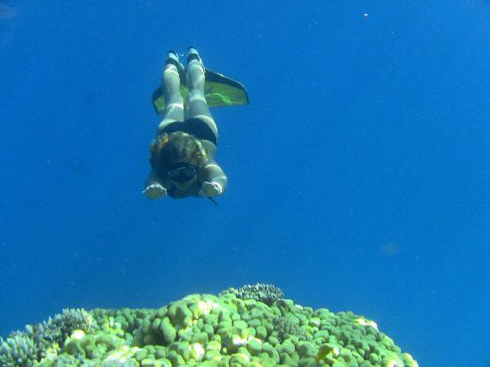 ดอฮับ, อียิปต์: Blue Lagoon - The Island - Dahab