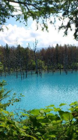Blue Pond : 通称「青い池」