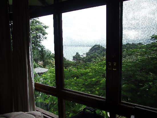 Tulemar Bungalows & Villas: View from the lounge
