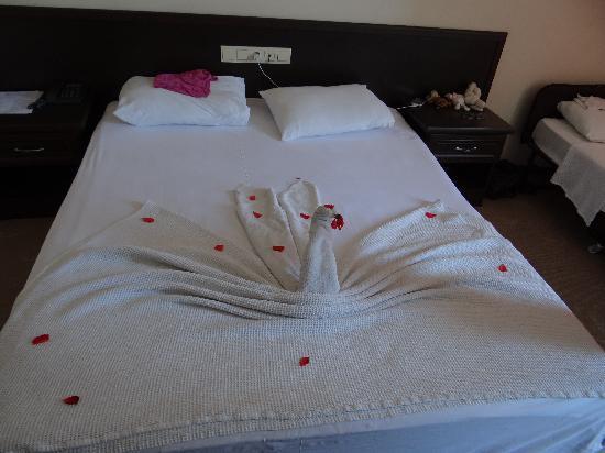 Arora Hotel: каждый день что-то новенькое