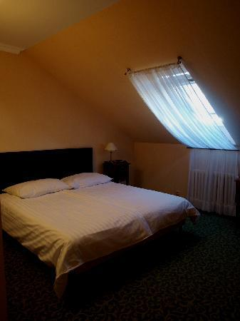 Hotel Angelis Prague: 部屋