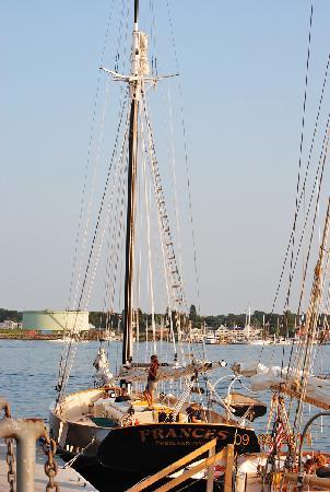 Maine Sailing Adventures: Frances
