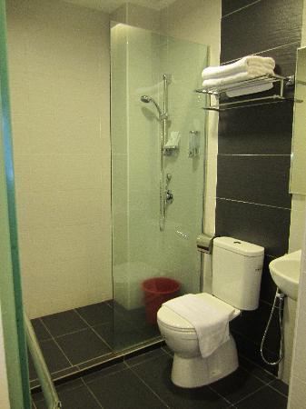 Lotus Family Hotel: bathroom 1