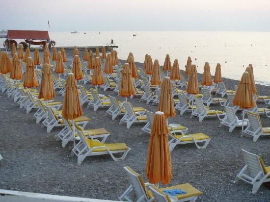 Yelken Blue Life Spa & Wellness Hotel: beach ( sunbeds)