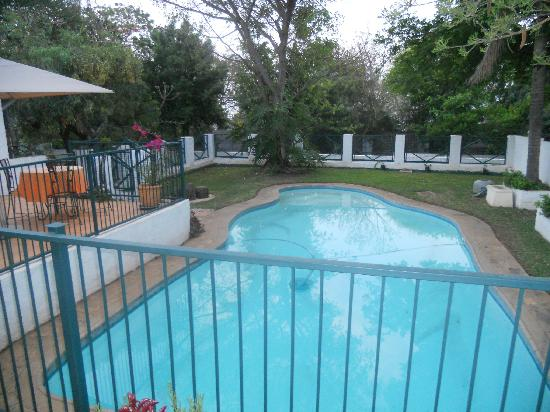 The Bushbaby Inn: Swimming pool