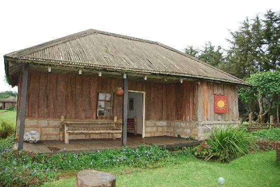 Castle Forest Lodge: Castle Forest Bungalow