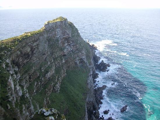 Cape of Good Hope: Am Kap