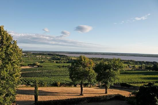 Bordeaux Chateau B&B: View from the back of the chateau