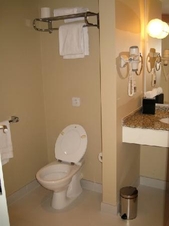 Hyatt Regency Paris Charles de Gaulle: toilet