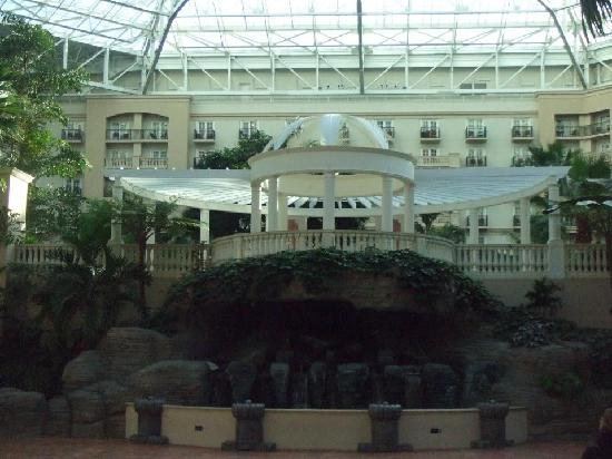 Gaylord Palms Resort & Convention Center: Atrium